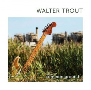 WALTER TROUT CD COMMON GROUND